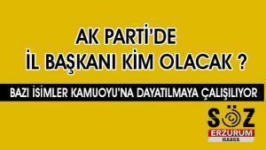 Ak Parti Başkan Öz'le devam mı diyecek ?
