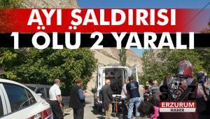 Ayı saldırısı 1 kişiyi öldürdü 2 kişiyi de yaraladı