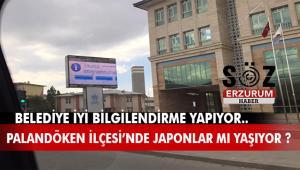 Palandöken Belediyesi'nin led ekranları