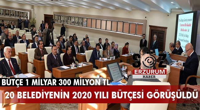 Büyükşehir'in bütçesi oy birliği ile kabul edildi