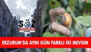 Erzurum'da aynı gün farklı iki mevsim