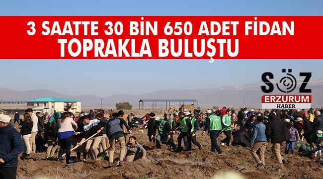 Erzurum'da Geleceğe Nefes Kampanyası Fidan Dikim Etkinliği