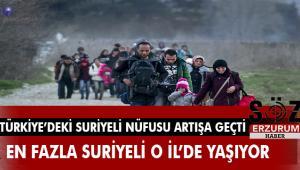 Medya takip kurumuAjans Press,Suriyelilerle ile ilgili basına yansıyan haber adetlerini inceledi