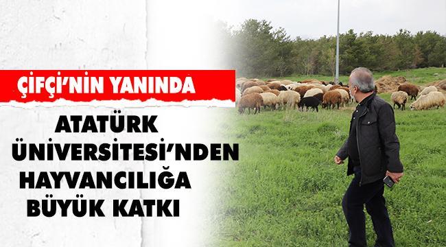 Atatürk Üniversitesinden Gıda ve Hayvancılığa Bilimsel Yaklaşım
