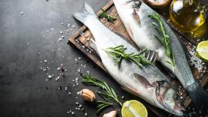 Omega-3 deposu balığın tam zamanı