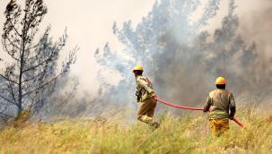 Orman yangınlarıyla mücadelesinde OGM'ye ödül